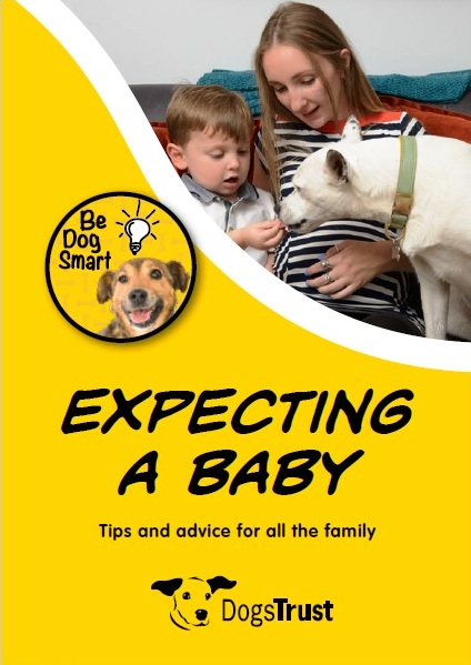 Expecting a baby leaflet